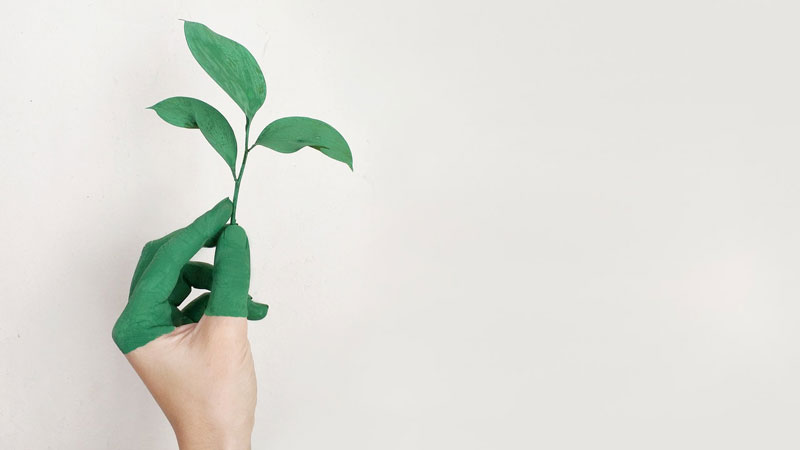 Duurzaam & ecologisch